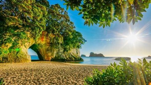 a beach in new zealand