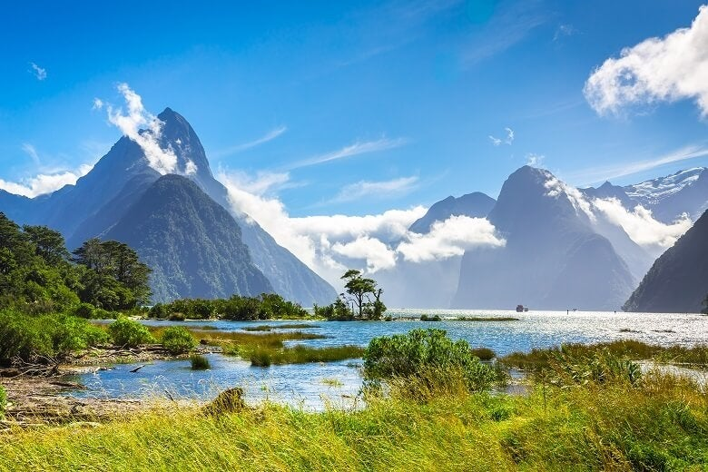 Moving to New Zealand? | The 21 Essential Things To Know