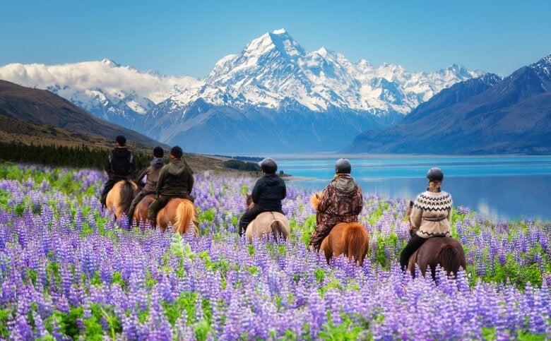 people on horseback in new zealand