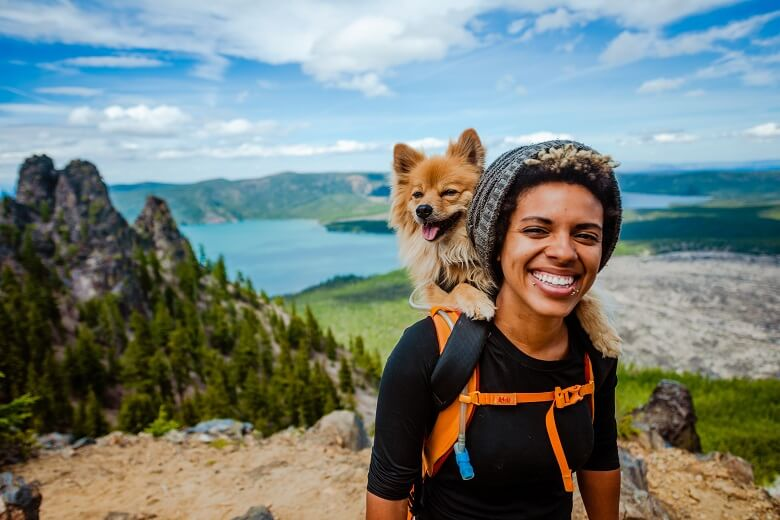 Traveller hiking with their pet