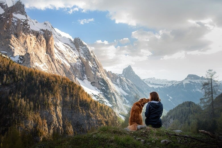 A traveller and their pet overlooking mountains