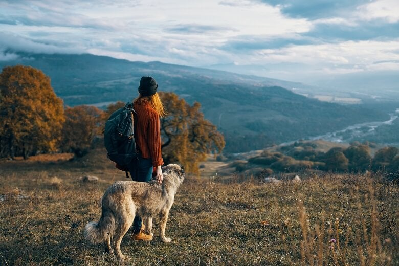 A dog and its owner looking at a view